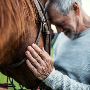 nlm 1114 1 Equine Assisted Therapy